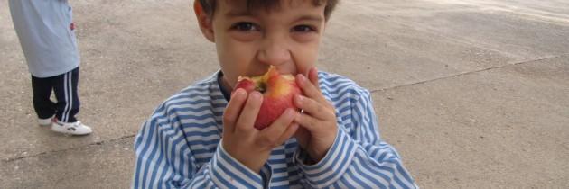 Fiesta de los Frutos de Otoño